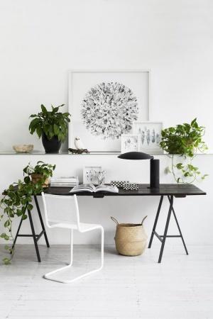 decoration de votre bureau