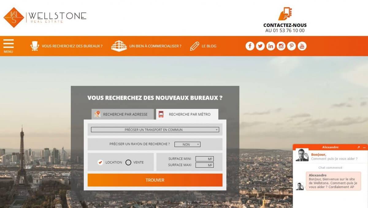 Wellstone Homepage