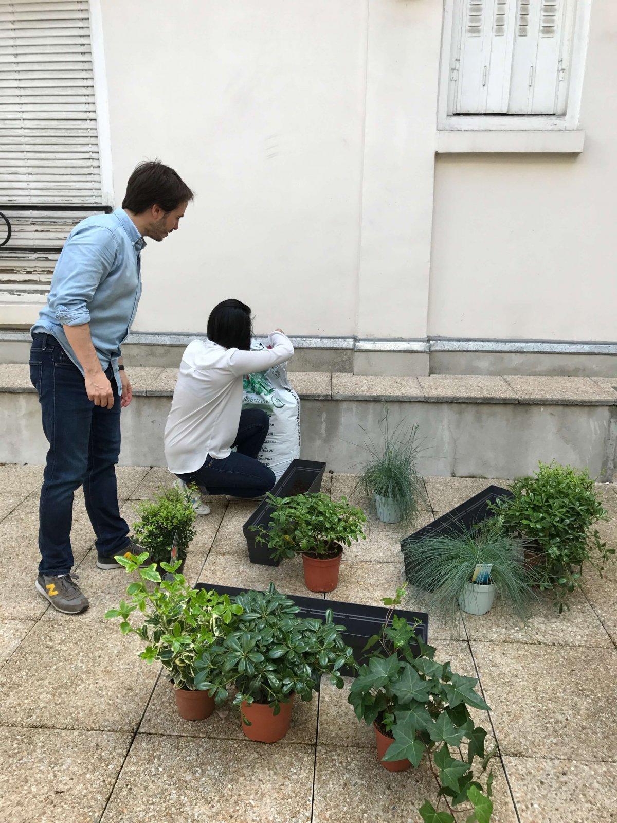 QVT plantes bureaux
