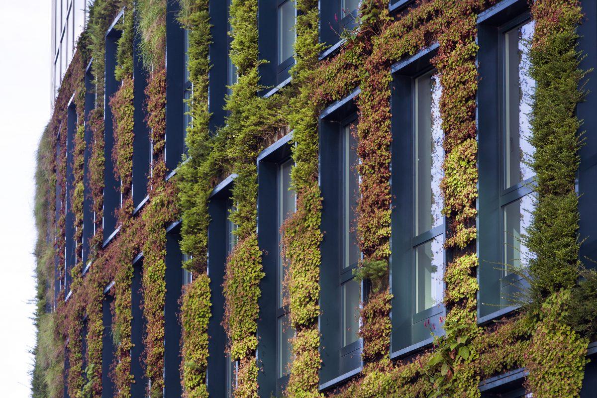 certifications environnementales bureaux